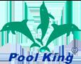 pool-king-logo